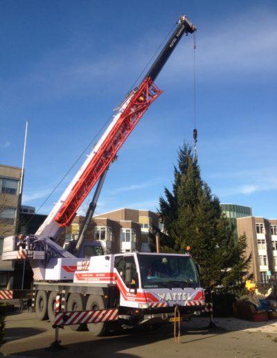 wattel verhuur hijst kerstbomen